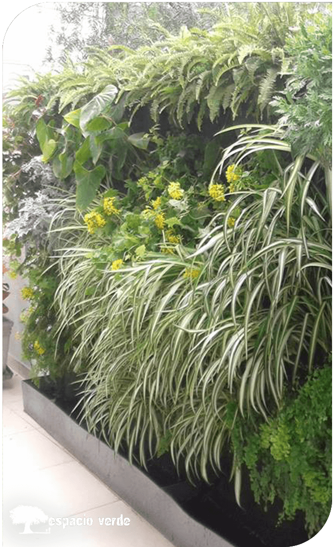 jardin vertical 03